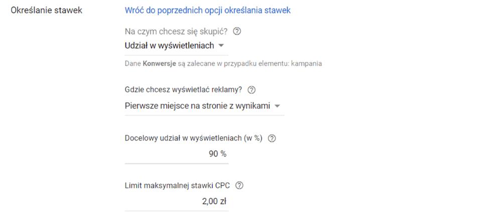 Panel Google Ads - Określanie stawek