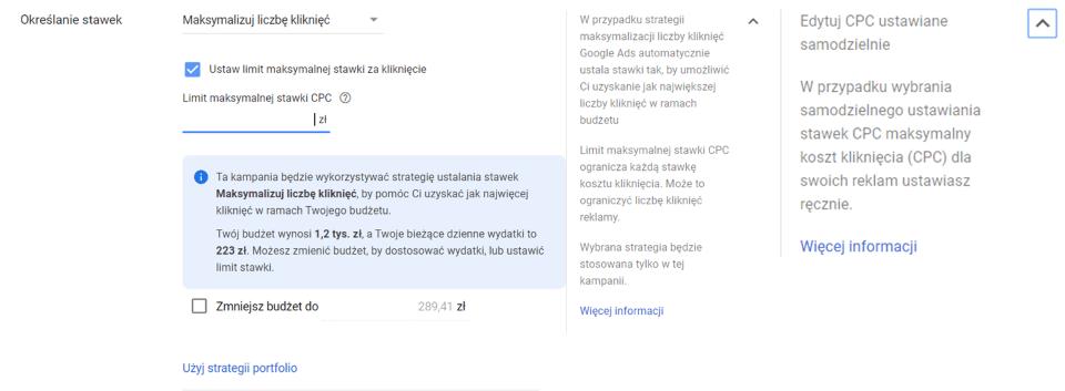 Panel Google Ads - Maksymalizacja liczby kliknięć